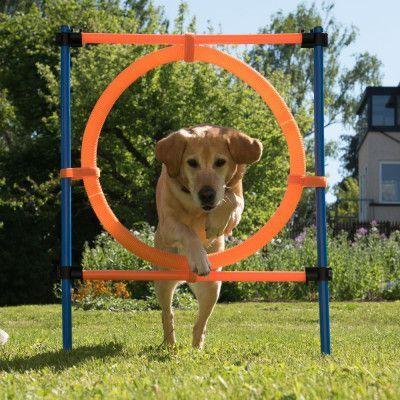Agility Fun & Sport hoppring - Ø 55 cm