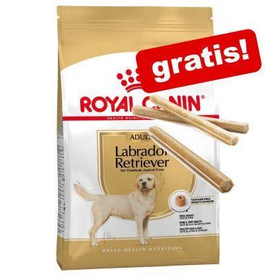 7,5 - 12 kg Royal Canin Breed hundfoder + 3 Barkoo tuggpinnar på köpet! - Labrador Retriever Adult (12 kg)