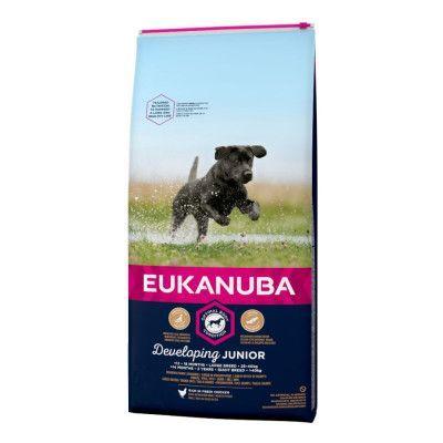 Eukanuba Developing Junior Large & Giant Breed Chicken - Ekonomipack: 2 x 15 kg