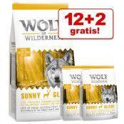 12 + 2 kg på köpet! 14 kg Wolf of Wilderness torrfoder - Wild Hills - Duck