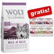 12 kg Wolf of Wilderness + 6 x 300 g våtfoder i blandpack på köpet! - The Taste Of The Savanna (utan potatis)