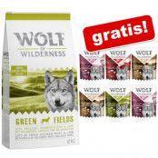 12 kg Wolf of Wilderness + 6 x 300 g våtfodermix på köpet! - JUNIOR Green Fields - lamm