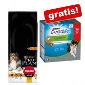 14 kg PURINA PRO PLAN hundfoder + Purina Dentalife Snacks på köpet! - Medium Adult Sensitive Skin Salmon OPTIDERMA (14 kg) + 24 sticks Medium