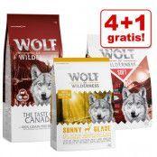 4 + 1 på köpet! 5 x 1 kg Wolf of Wilderness torrfoder i blandpack - Favourite Mix