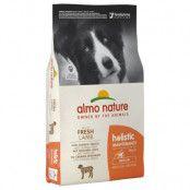 Almo Nature Holistic Adult Medium Lamm & ris - 12 kg