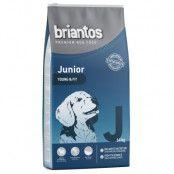 Briantos Junior Young & Fit - Ekonomipack: 2 x 14 kg