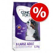 Concept for Life 1,5 kg till lågt prova-på-pris! - Large Senior