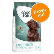 Concept for Life 1,5 kg till sparpris! Medium Junior
