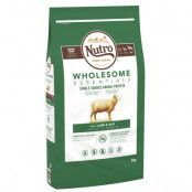 Nutro Wholesome Essentials Adult Large Dog Lamb & Rice - Ekonomipack: 2 x 8 kg