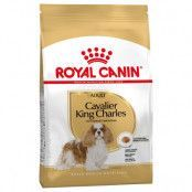 Royal Canin Cavalier King Charles Adult - 3 kg