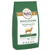 Nutro Wholesome Essentials Puppy Lamb & Rice - 3 x 1,5 kg