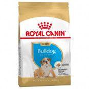 Royal Canin Bulldog Puppy Ekonomipack: 2 x 12 kg