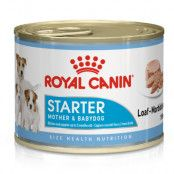 Royal Canin Starter Mousse Mother & Babydog 24 x 195 g