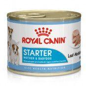 Royal Canin Starter Mousse Mother & Babydog 48 x 195 g