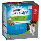 Purina Dentalife Daily Oral Care för medelstora hundar (12-25 kg) - 24 sticks (8 x 69 g)