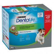 Purina Dentalife Daily Oral Care för små hundar (7-12 kg) - 30 sticks (10 x 49 g)