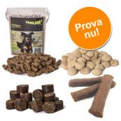 4 sorters strutsgodis för hundar i billigt blandat provpack! - 1,5 kg provpack, 4 olika sorter