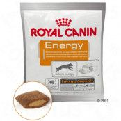 Royal Canin Energy Booster - 50 g