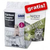 Savic Puppy Trainer Pads + 180 g Wolf of Wilderness Junior Snack på köpet! - Large: L 60 x B 45 cm, 50 st med aktivt kol
