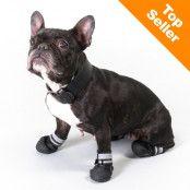S & P Boots hundskor - Storlek XS