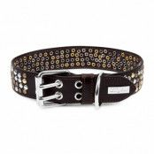 COOLSTUFF Brown - Läder Hundhalsband