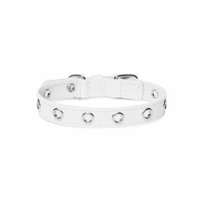 ROCK White - Läder Hundhalsband