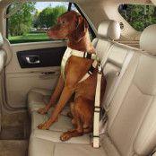 Beige - Bilsele för hundar