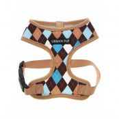 Brown & Blue Argyle - Hundsele