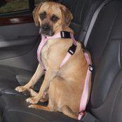 Cruising Bilsele för hundar Rosa