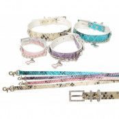 Royalty Halsband + Koppel - Blå - XL