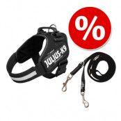 Sparset: JULIUS-K9 IDC®-Powersele, svart + JULIUS-K9® ulius-K9® gummerat koppel - Stl. 1 + 220 cm koppel (upp till 50 kg)