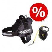 Sparset: JULIUS-K9® Powersele, antracit + koppel flexi Giant Professional - 10 m - Stl. 2/L–XL + Flexi
