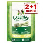 2 + 1 på köpet! 3 x Greenies tandvårdsgodis Greenies Grainfree Medium 3 x (170 g / 6 st)