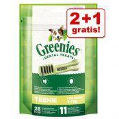 2 + 1 på köpet! 3 x Greenies tandvårdsgodis Greenies Grainfree Teenie 3 x (170 g / 22 st)